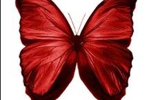 Vermelho, vermelhaço, vermelhusco, vermelhante, vermelhão!
