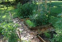 Gardening / by Sarah Thornton