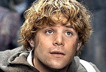 """Fangirl: Lord of the Rings / You can't get enough Lord of the Rings. I love Sam.  Sam is the true hero.   """"I made a promise Mr. Frodo, a promise...'Don't you lose him Samwise Gamgee' and I don't mean to."""""""