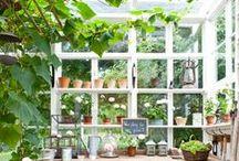 home / garden & balcony