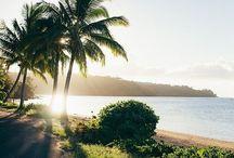 hawaii //