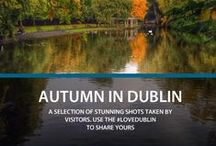 Autumn in Dublin / Autumn is a spectacular time in Dublin when the parks, gardens and tree lined avenues turn to golden hues.   Check out these stunning pictures of Dublin in all its seasonal glory! Use #LoveDublin to share your photos.