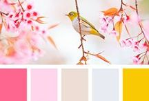 Colour Palettes / A collection of colour palettes to suit every kind of project