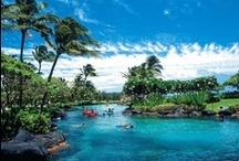 hawaii / by Rachel Kilpatrick