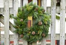 Holiday Decor / by Rachel Kilpatrick