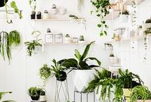 Studio Inspiration / Upcycled and DIY decor