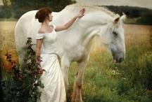 Fairytale Dreams / by Angela Erikson