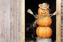 Halloween Decorating! / by Angela Erikson