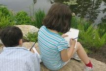 Nature Journaling with Kids / A wonderful way for us all to connect with nature!