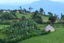 Ethiopia / Travel