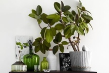 Homegoods / Products and items that would work well in our house as part of the decor or interior design mostly in indigo, cement, linen, house plants, dishes etc.