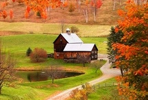 Barns, Mills, and Covered Bridges / by Karen Gilley