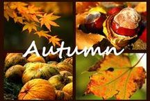 Fall into Autumn / by Laced with God's Grace
