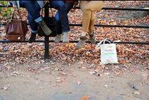 fall / by Perryn Pettus