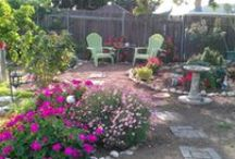 Shay's Little Garden / A small yard with a big purpose.