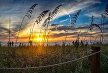 Captiva Sunsets / by 'Tween Waters Inn
