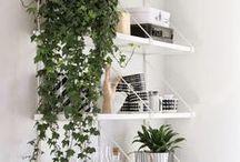 Home | Entryway / Idee e decorazioni per il corridoio d'ingresso