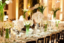 Entertaining......Party Ideas / by Cathy Oliver