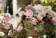Entertaining.....Centerpieces / by Cathy Oliver