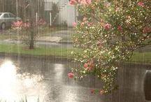 Rain / Rain