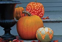 punkins and other fall favorites / by Megan
