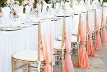 Wedding    Rit Dye /  Everything wedding, bride, groom, bridesmaids, groomsmen - with a little Rit Dye!