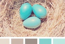 Paint Color Love / by Sarah Havel