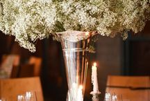 Baby's Breath & Lace Wedding / by Erin