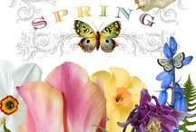 Spring Fever / by Kelly Bybee