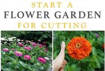 Gardening: With Flowers