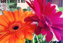 My Faith!