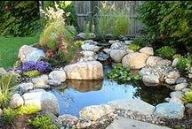 Gardens: Water Features in the Garden / There's something about water in a garden: soothing, dramatic, ethereal.