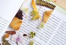 ✧ bookmark ✧