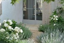 Gardening: Silver and White / Using silver and/or white in combination in the garden: dreamy and romantic!