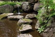 Stepping Stones - MG novel inspirations