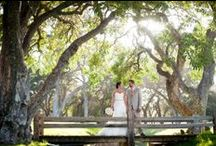 Venues / Premier wedding venues from San Francisco to New York to far destinations. / by Catherine Hall Studios
