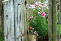 Meet Me At The Garden Gate / by Erin Petersen