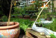 Schoolgarden / Inspiraties voor de binnentuin van CBS de Vliermeent. De binnentuin wordt m.b.v. een subsidie van Groenen Schoolpleinen samen met kinderen en ouders omgevormd tot een groene speel-, ontdek- en beleeftuin.