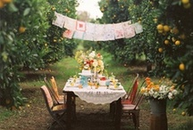 Outdoor Parties / Ideas to throw the perfect outdoor party.