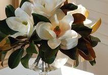 fleur / blooms + arrangements.