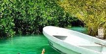 Other Activities in Tulum / In Tulum you can appreciate the wonders of nature while kayaking, floating, fishing, trekking... or practicing yoga under a palapa in the middle of the jungle.