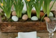 Spring Has Sprung / Easter and all things Spring season