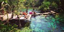 Discover the cenotes / All about the Yucatan & Mayan Riviera cenotes. Magic Natural Pools.