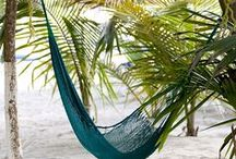 Hammock time / Hammocks photos... Because there is not place like a hammock to relax