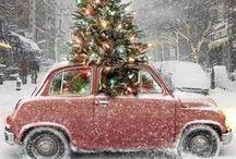 Holiday Decorations / by debra szidon