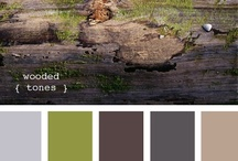 Colors / by Sue Estep