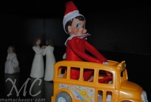 Sir Sneaky Tinsel / Our Elf on the Shelf / by Terrie Toombs