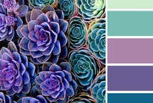 Design Ideas / Colors and design ideas found here!