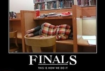 Surviving Final Exams / Funny and true. Hang in there! / by StudentAdvisor.com | LearningAdvisor.com