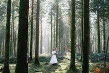FOREST WEDDING //